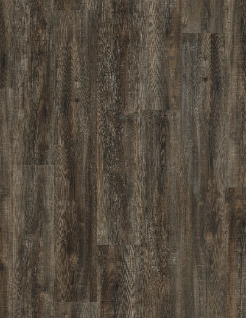 Coretec Wood - Olympic Pine