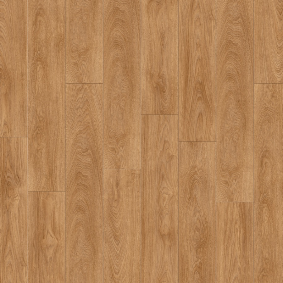 Laurel Oak 51822XL