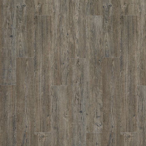 Moduleo Transform - Latin Pine 24868