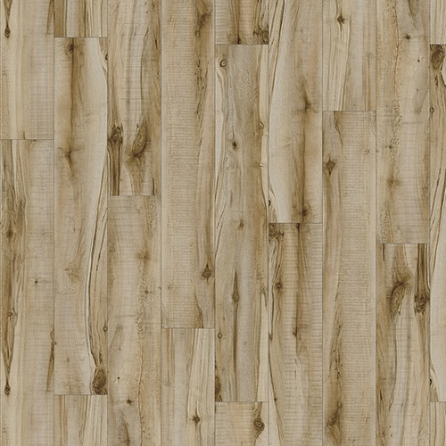 Moduleo Transform - Cotton Wood 20219