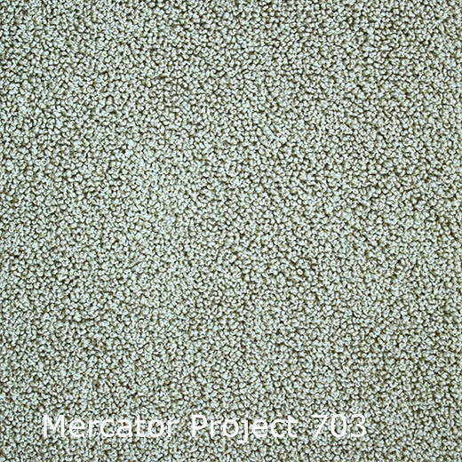 Interfloor Mercator Project - 703
