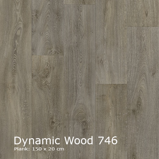 Interfloor Dynamic Wood - 746
