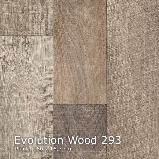 Interfloor Evolution Wood - 293